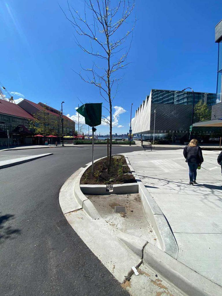 north vancouver asphalt paving project